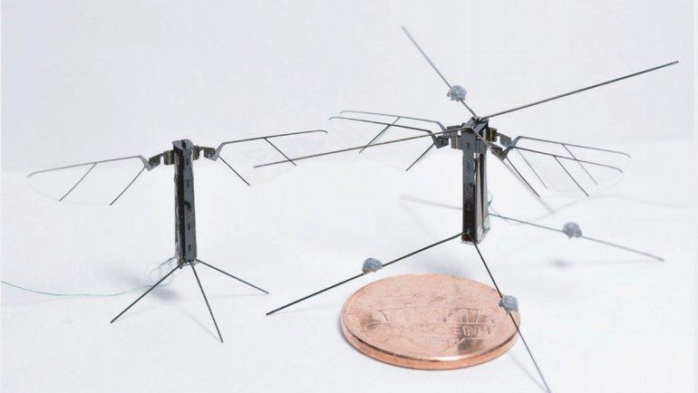 Böcek robotlar geliyor